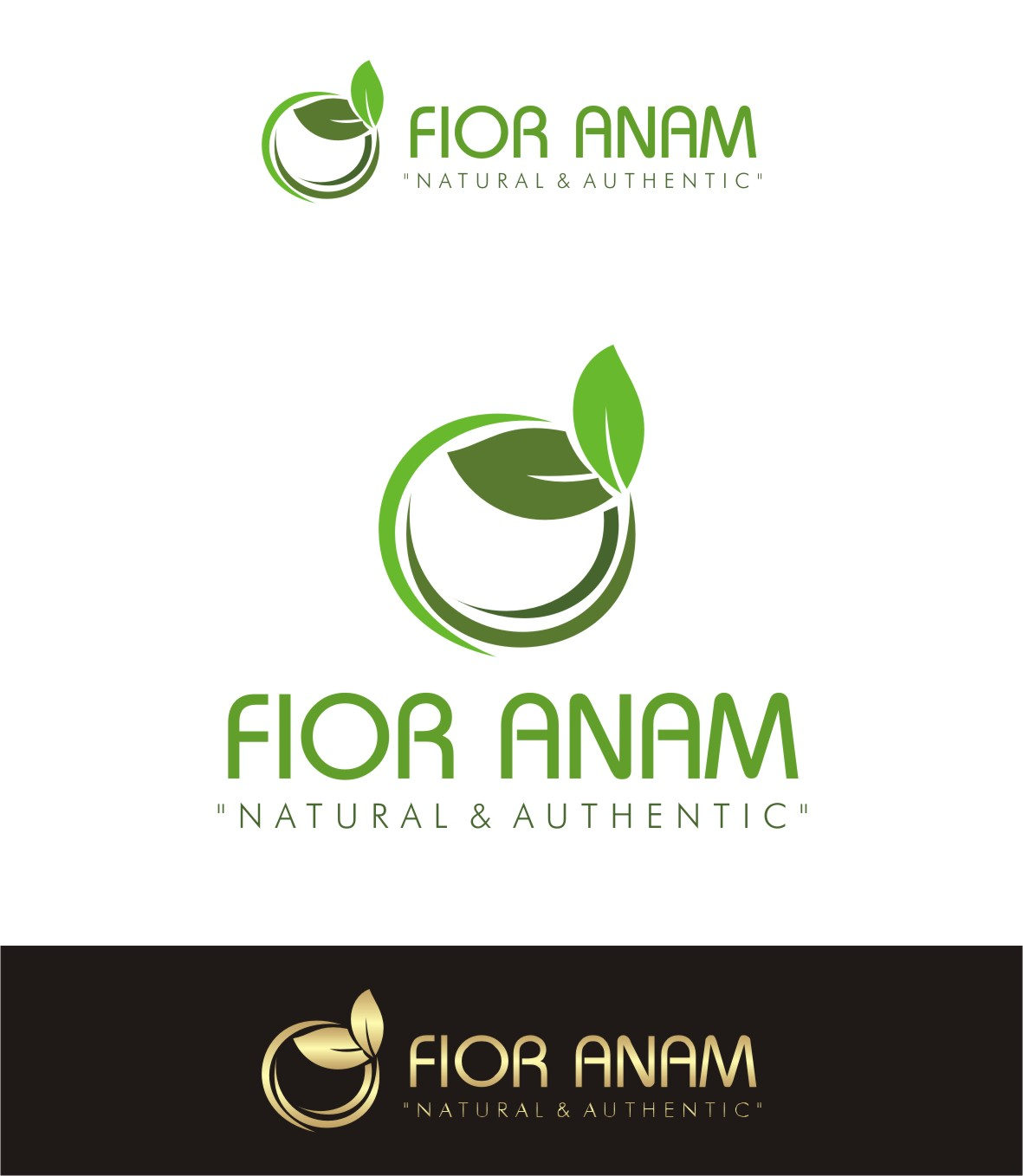 Logo Design by Lynx Graphics - Entry No. 353 in the Logo Design Contest Creative Logo Design for Fior Anam.