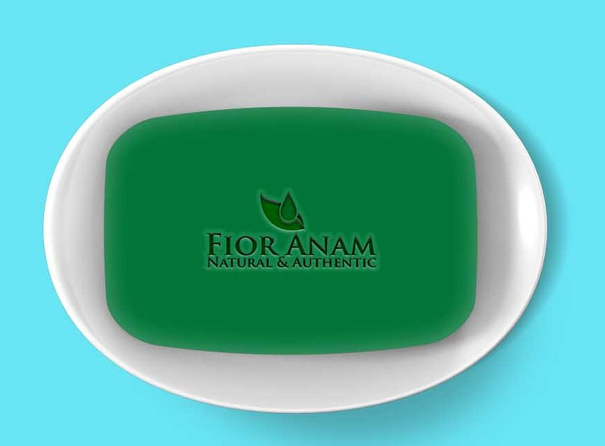 Logo Design by Private User - Entry No. 401 in the Logo Design Contest Creative Logo Design for Fior Anam.