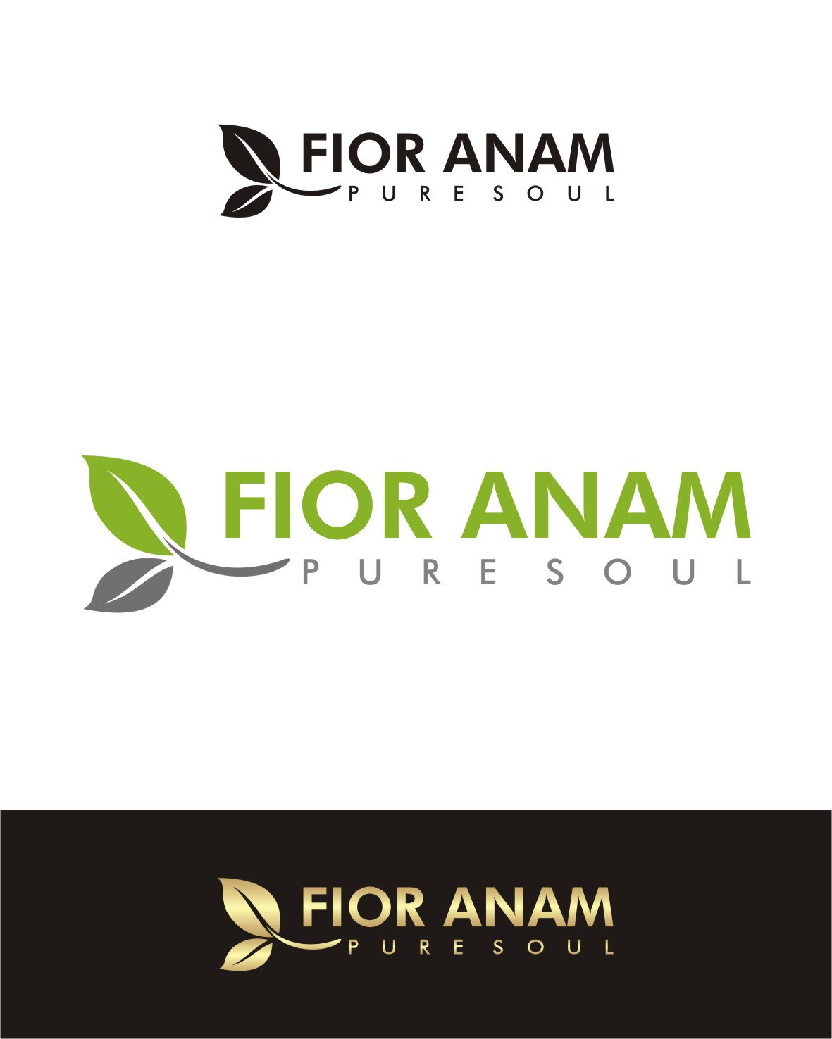 Logo Design by I graphics GRAPHICS - Entry No. 409 in the Logo Design Contest Creative Logo Design for Fior Anam.