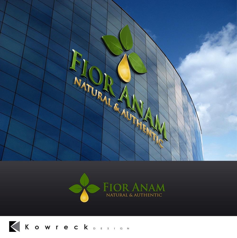 Logo Design by kowreck - Entry No. 423 in the Logo Design Contest Creative Logo Design for Fior Anam.