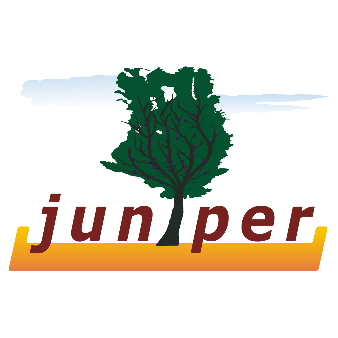 Logo Design by ElisG - Entry No. 16 in the Logo Design Contest Juniper.