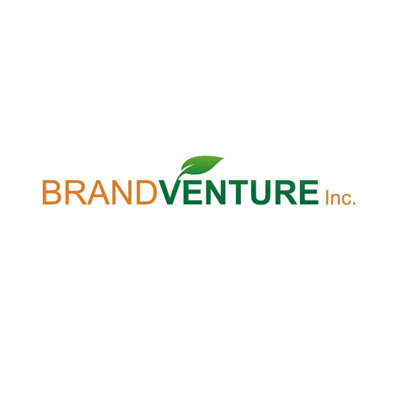 Logo Design by logodo - Entry No. 56 in the Logo Design Contest BRANDVENTURE Inc..