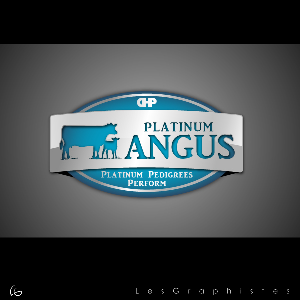Logo Design by Les-Graphistes - Entry No. 26 in the Logo Design Contest Platinum Angus Cattle.