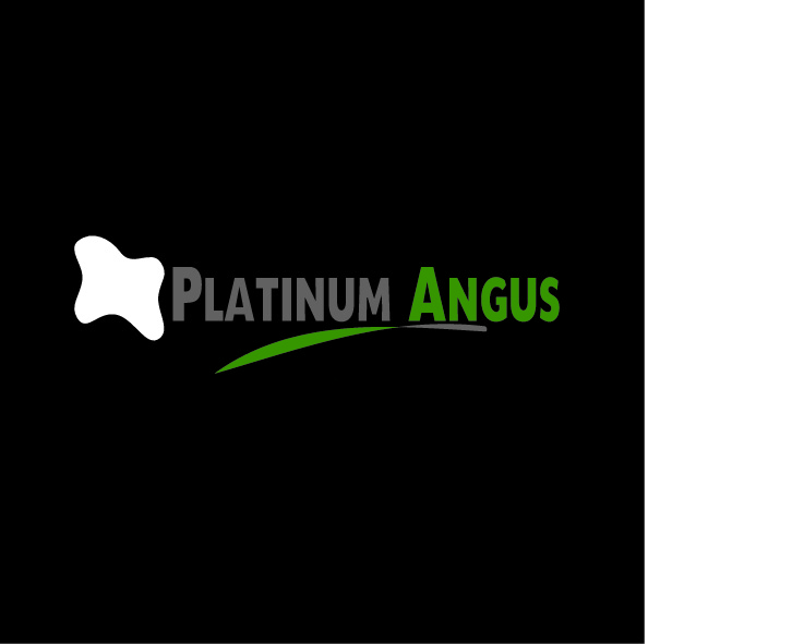 Logo Design by Gavriel Charalambous - Entry No. 52 in the Logo Design Contest Platinum Angus Cattle.