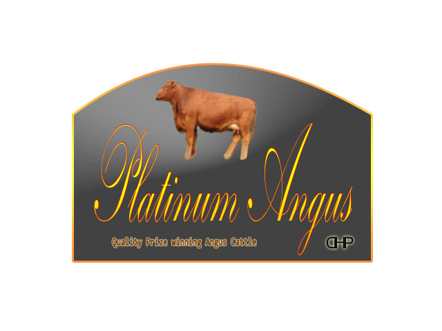 Logo Design by Moag13 - Entry No. 56 in the Logo Design Contest Platinum Angus Cattle.