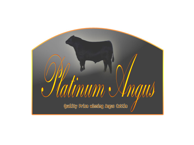 Logo Design by Moag13 - Entry No. 58 in the Logo Design Contest Platinum Angus Cattle.