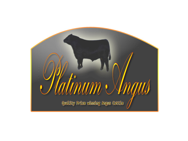 Logo Design by Moag13 - Entry No. 60 in the Logo Design Contest Platinum Angus Cattle.