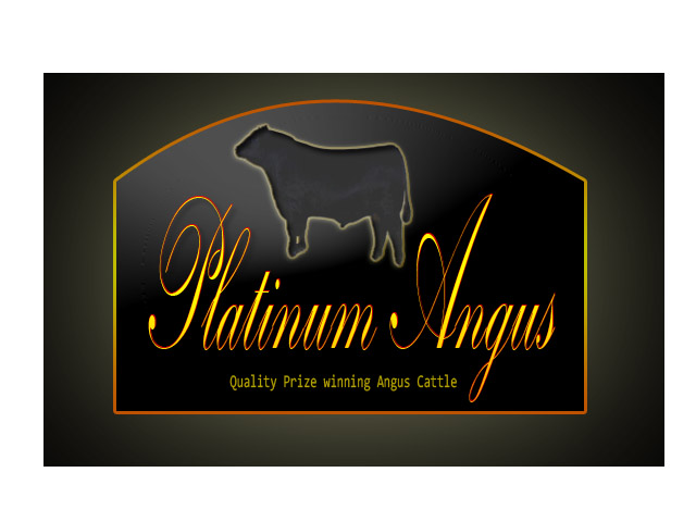 Logo Design by Moag13 - Entry No. 61 in the Logo Design Contest Platinum Angus Cattle.