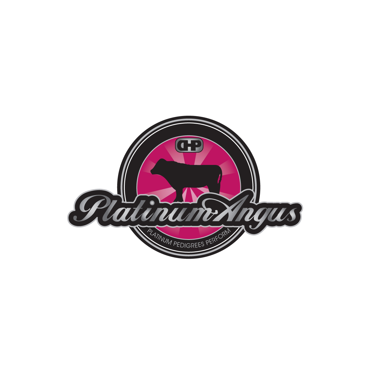 Logo Design by Private User - Entry No. 79 in the Logo Design Contest Platinum Angus Cattle.