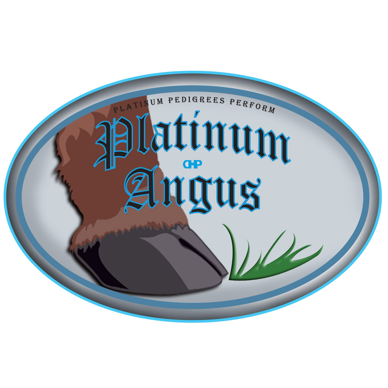 Logo Design by robken0174 - Entry No. 83 in the Logo Design Contest Platinum Angus Cattle.
