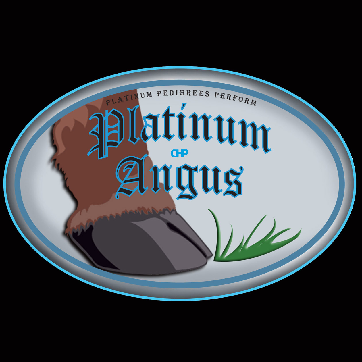 Logo Design by robken0174 - Entry No. 84 in the Logo Design Contest Platinum Angus Cattle.