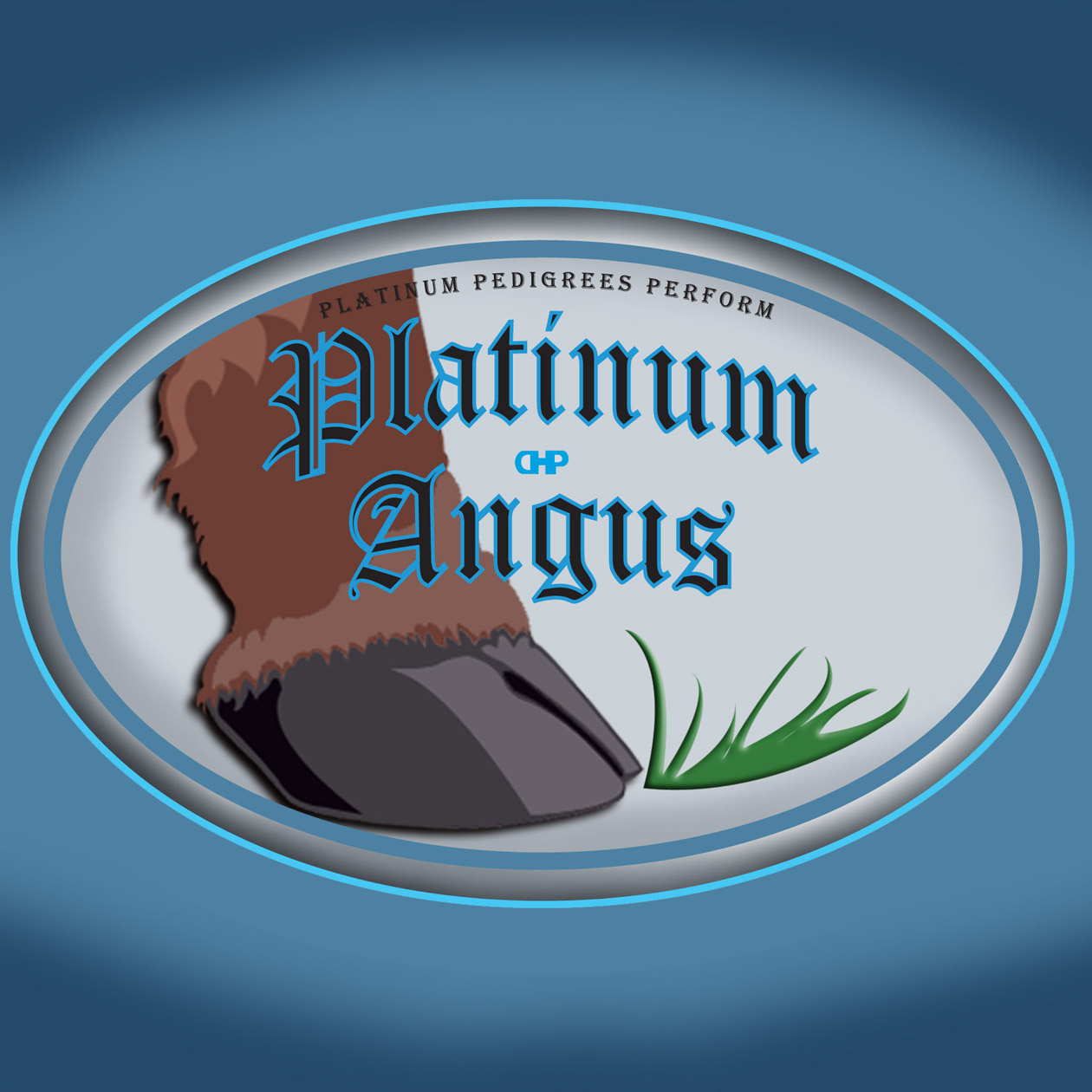 Logo Design by robken0174 - Entry No. 85 in the Logo Design Contest Platinum Angus Cattle.