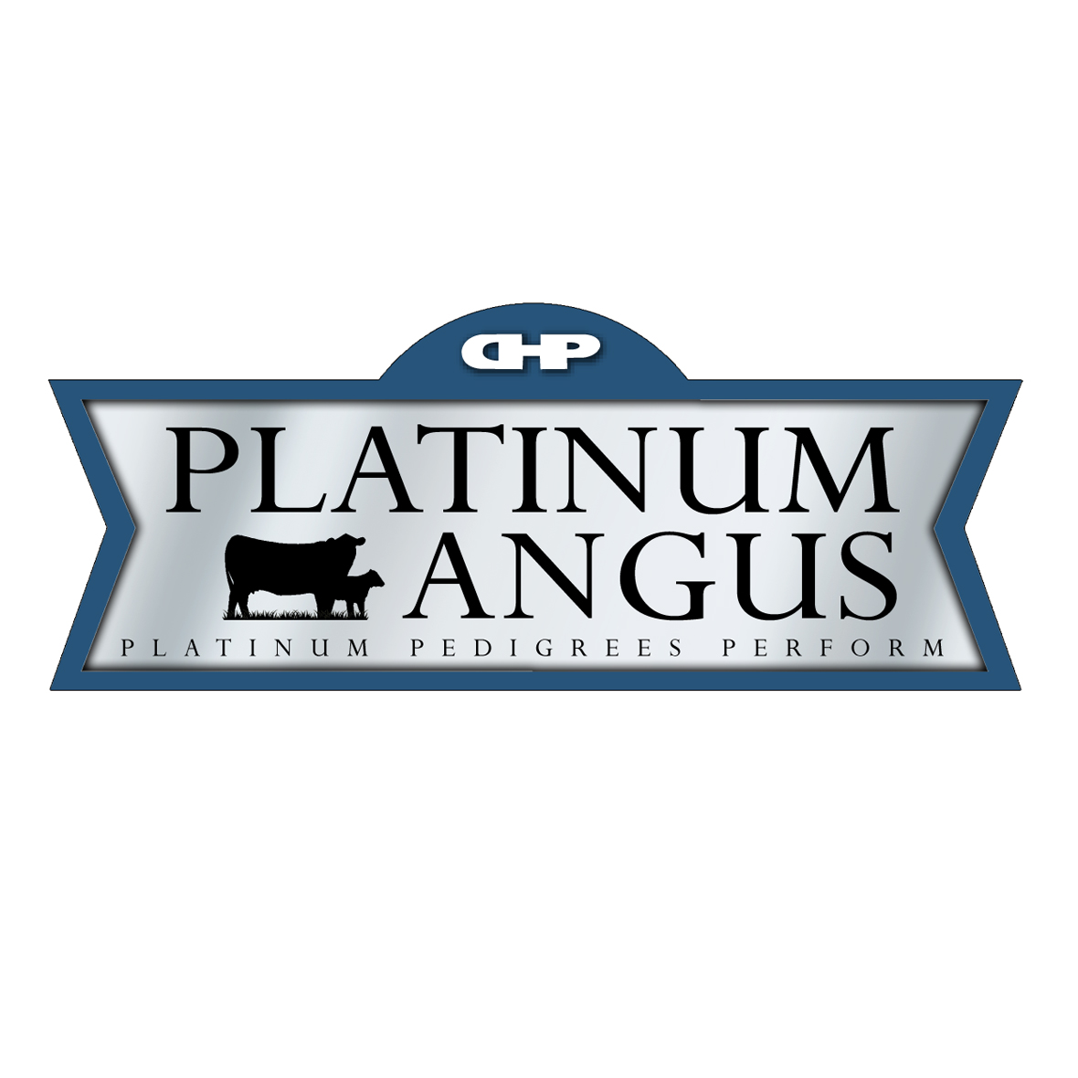 Logo Design by Lefky - Entry No. 91 in the Logo Design Contest Platinum Angus Cattle.