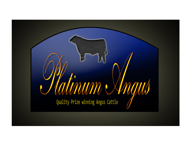 Logo Design by Moag13 - Entry No. 93 in the Logo Design Contest Platinum Angus Cattle.