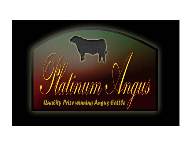 Logo Design by Moag13 - Entry No. 95 in the Logo Design Contest Platinum Angus Cattle.