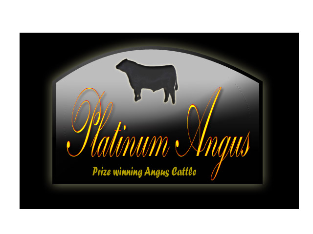 Logo Design by Moag13 - Entry No. 96 in the Logo Design Contest Platinum Angus Cattle.
