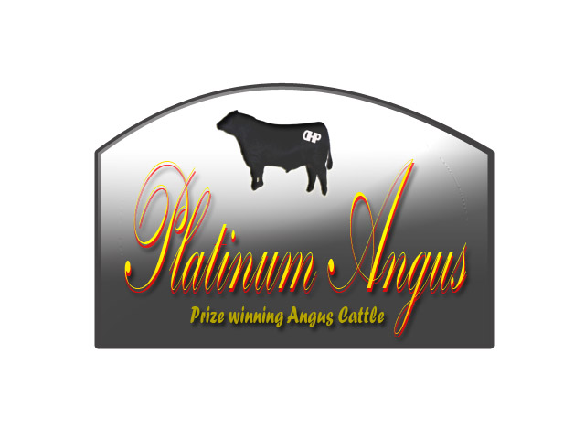 Logo Design by Moag13 - Entry No. 97 in the Logo Design Contest Platinum Angus Cattle.
