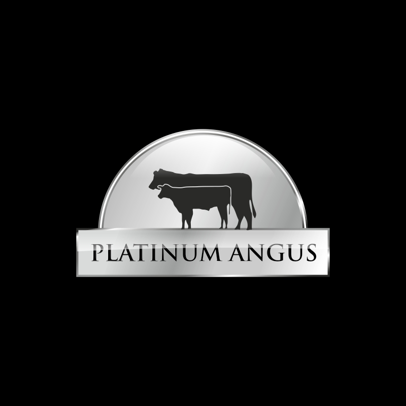 Logo Design by vuelta - Entry No. 100 in the Logo Design Contest Platinum Angus Cattle.