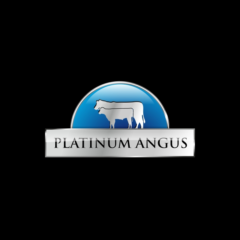 Logo Design by vuelta - Entry No. 101 in the Logo Design Contest Platinum Angus Cattle.