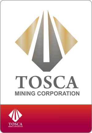 Logo Design by lestari - Entry No. 61 in the Logo Design Contest Branding Bold & Beautiful logo for a copper mining compa.