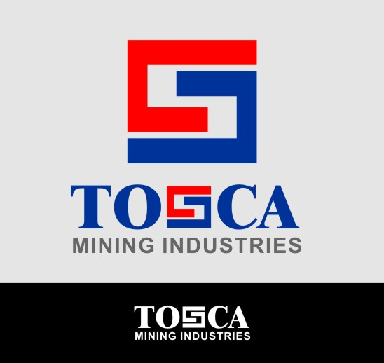 Logo Design by monza - Entry No. 143 in the Logo Design Contest Branding Bold & Beautiful logo for a copper mining compa.