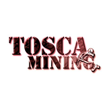 Logo Design by alexrogozea - Entry No. 163 in the Logo Design Contest Branding Bold & Beautiful logo for a copper mining compa.