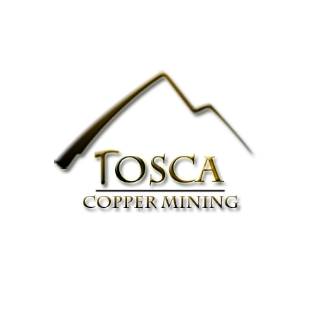 Logo Design by alexrogozea - Entry No. 190 in the Logo Design Contest Branding Bold & Beautiful logo for a copper mining compa.