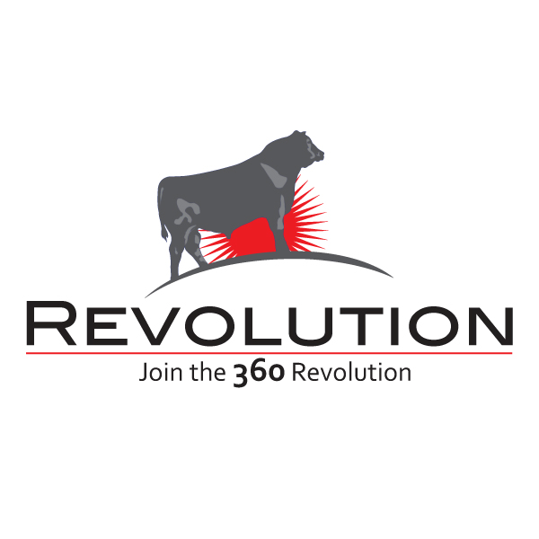 Logo Design by storm - Entry No. 46 in the Logo Design Contest Revolution.