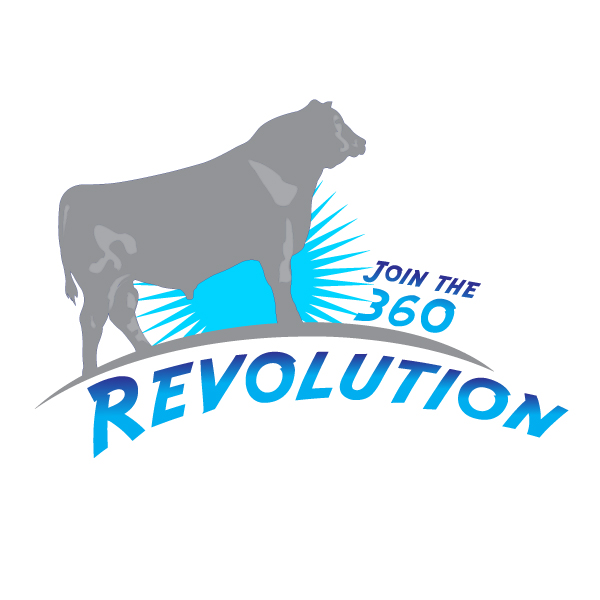 Logo Design by storm - Entry No. 48 in the Logo Design Contest Revolution.