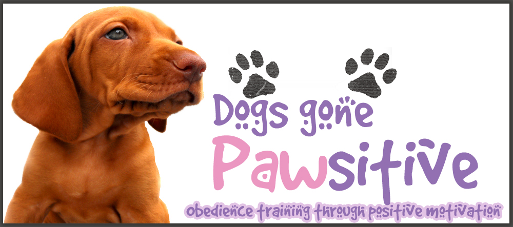 Logo Design by defenseless - Entry No. 51 in the Logo Design Contest Happy Playful Dog Logo.