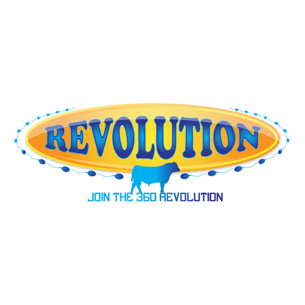 Logo Design by storm - Entry No. 66 in the Logo Design Contest Revolution.