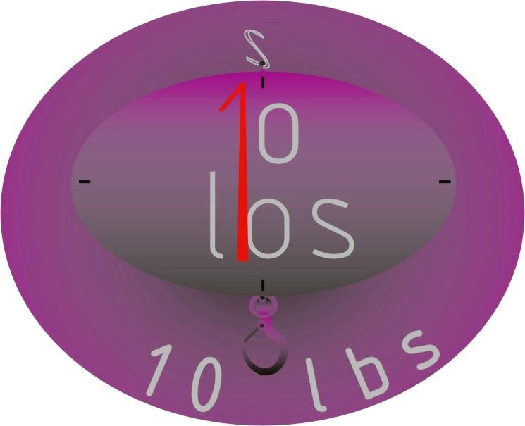 Logo Design by Mara-Patri - Entry No. 8 in the Logo Design Contest 10 lbs.