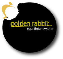 Logo Design by shafy - Entry No. 45 in the Logo Design Contest Equilibrium Within - Living Jewelry.