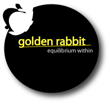 Logo Design by shafy - Entry No. 46 in the Logo Design Contest Equilibrium Within - Living Jewelry.