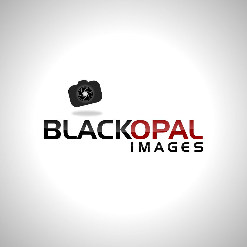 Logo Design by martinz - Entry No. 4 in the Logo Design Contest New Logo Design for Black Opal Images.