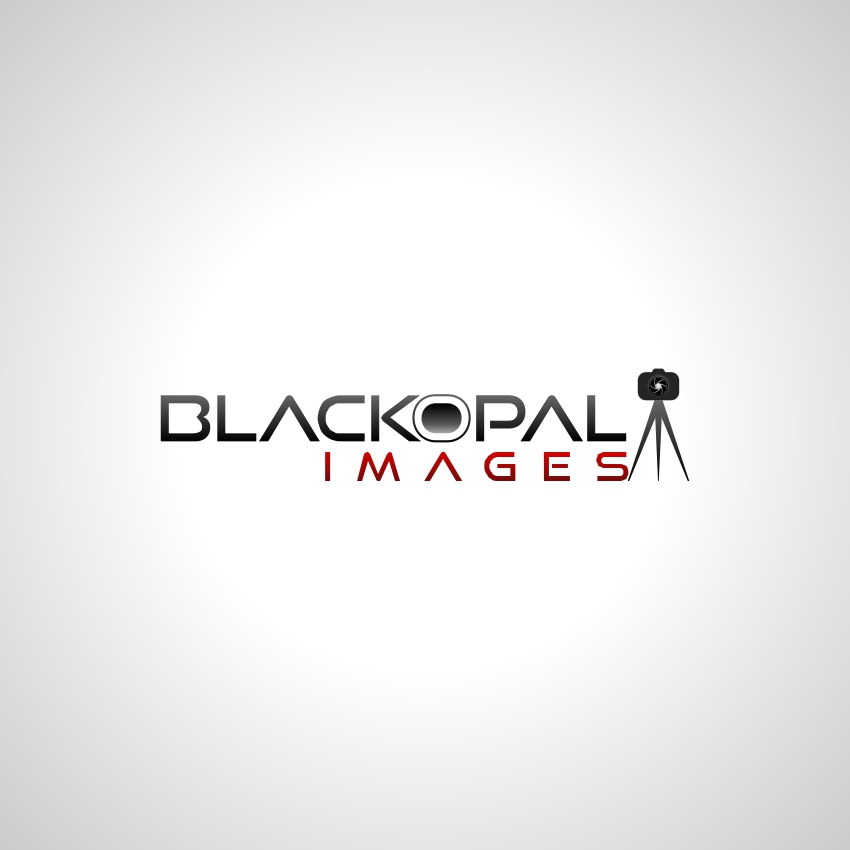 Logo Design by martinz - Entry No. 5 in the Logo Design Contest New Logo Design for Black Opal Images.