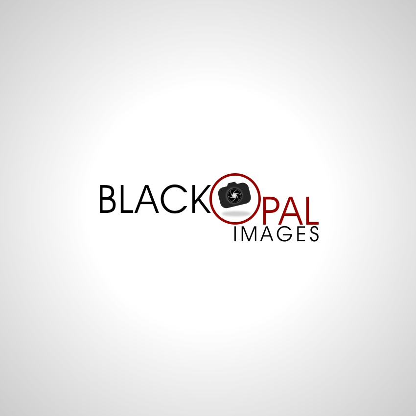 Logo Design by martinz - Entry No. 6 in the Logo Design Contest New Logo Design for Black Opal Images.
