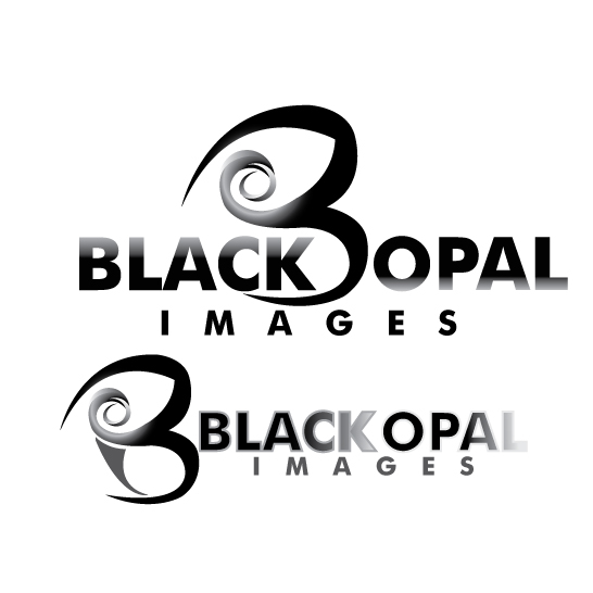 Logo Design by stormbighit - Entry No. 10 in the Logo Design Contest New Logo Design for Black Opal Images.