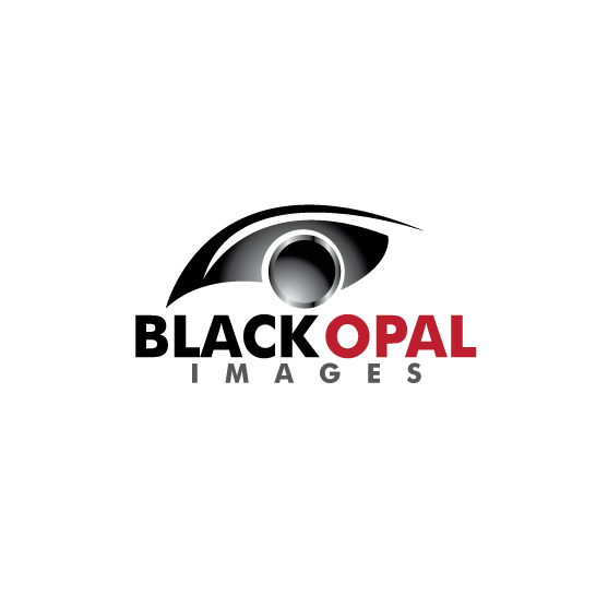 Logo Design by stormbighit - Entry No. 11 in the Logo Design Contest New Logo Design for Black Opal Images.