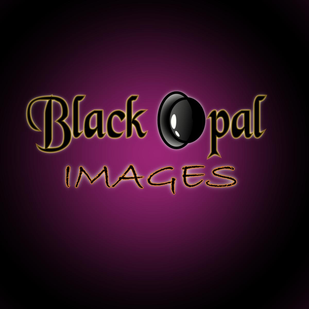 Logo Design by Joseph calunsag Cagaanan - Entry No. 14 in the Logo Design Contest New Logo Design for Black Opal Images.