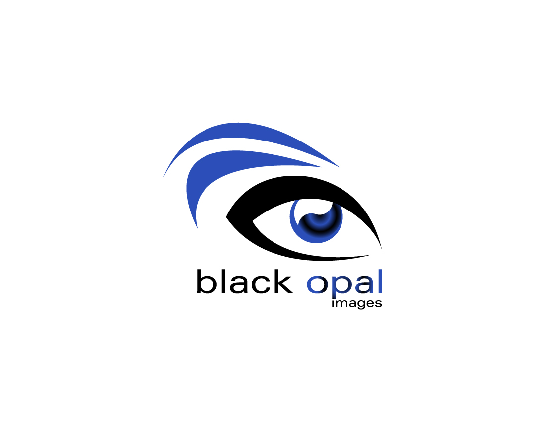 Logo Design by Katarzyna Polak - Entry No. 19 in the Logo Design Contest New Logo Design for Black Opal Images.