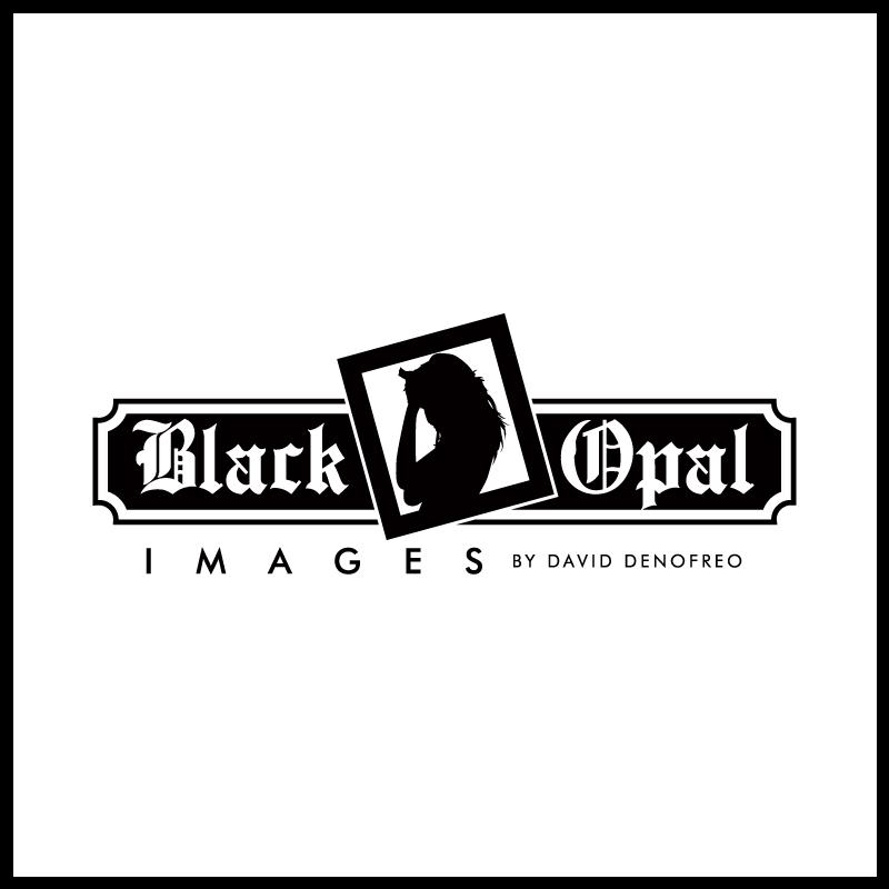 Logo Design by Number-Eight-Design - Entry No. 20 in the Logo Design Contest New Logo Design for Black Opal Images.