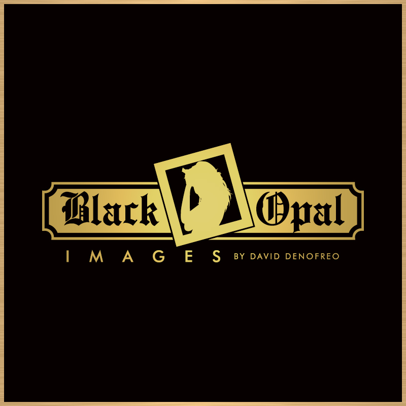Logo Design by Number-Eight-Design - Entry No. 21 in the Logo Design Contest New Logo Design for Black Opal Images.
