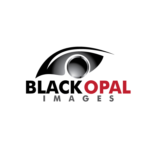 Logo Design by stormbighit - Entry No. 38 in the Logo Design Contest New Logo Design for Black Opal Images.