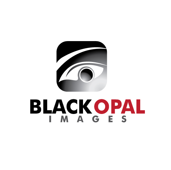 Logo Design by stormbighit - Entry No. 39 in the Logo Design Contest New Logo Design for Black Opal Images.