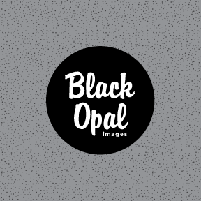 Logo Design by BrentC - Entry No. 43 in the Logo Design Contest New Logo Design for Black Opal Images.