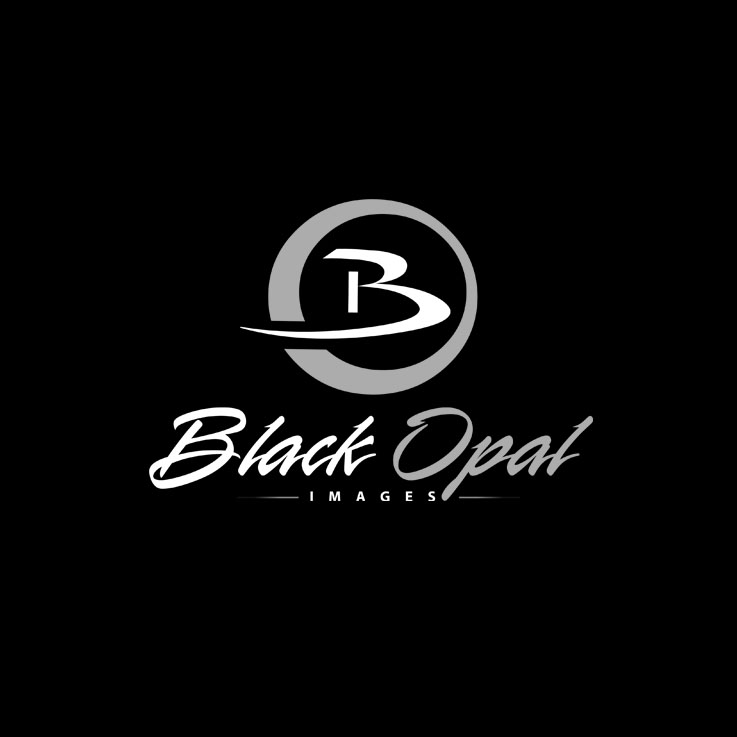 Logo Design by zdesign - Entry No. 45 in the Logo Design Contest New Logo Design for Black Opal Images.
