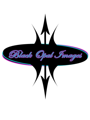 Logo Design by Moag - Entry No. 46 in the Logo Design Contest New Logo Design for Black Opal Images.