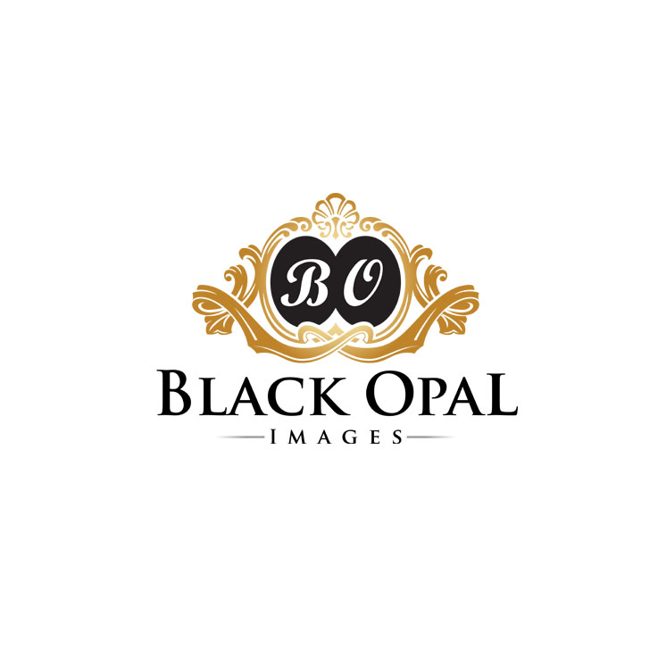 Logo Design by zdesign - Entry No. 47 in the Logo Design Contest New Logo Design for Black Opal Images.