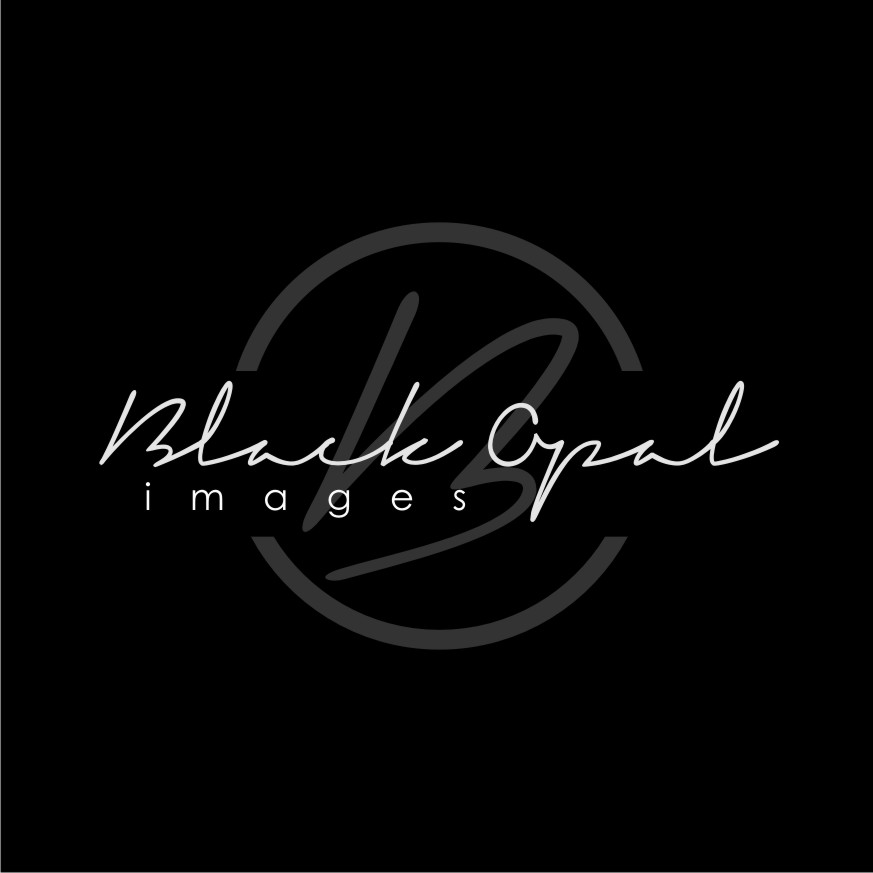 Logo Design by Heru budi Santoso - Entry No. 49 in the Logo Design Contest New Logo Design for Black Opal Images.
